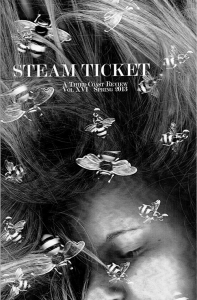 SteamTicketCover